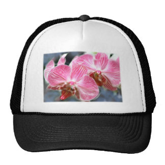 Striped Pink Phalaenopsis Orchids Trucker Hat