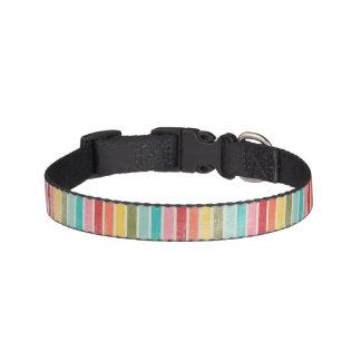 Striped Rainbow Dog Collar