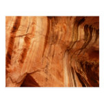 Striped Rock of Double Arch Alcove I Postcard