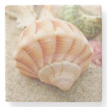 Striped Sea Shell Lightning Whelk Stone Coaster