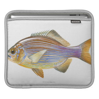 Striped Seaperch Sleeve For iPads