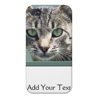 Striped Tabby with Green Eyes Cover For iPhone 4