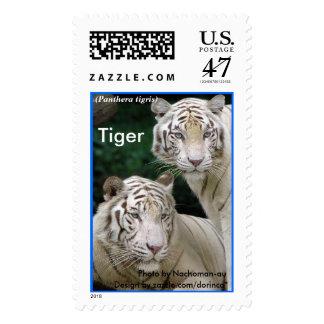 Striped White Tiger 3 Postage