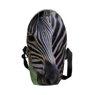 Striped Zebra Messenger Bag