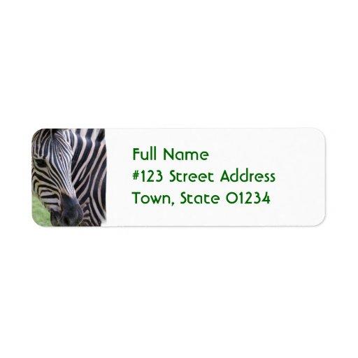 Striped Zebra Return Address Label | Zazzle