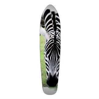 Striped Zebra Skateboards
