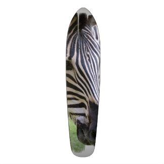Striped Zebra Custom Skateboard