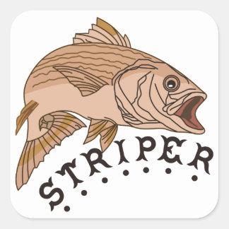 Striper Square Sticker