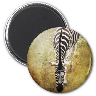 Stripes 2 Inch Round Magnet