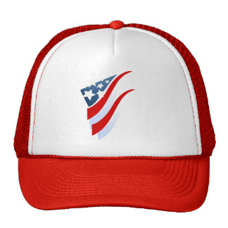 Stripes N Stars Hat