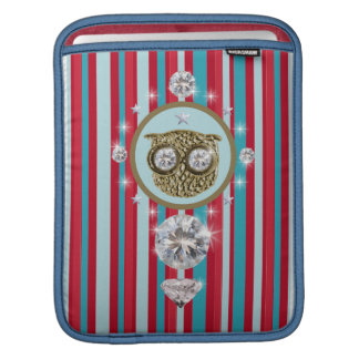 Stripes pattern with an owl iPad sleeve