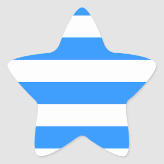 Stripes - White and Blue Star Sticker