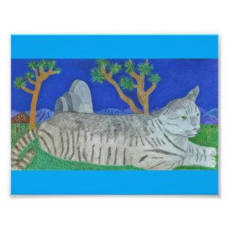 Stripey Cat At Joshua Tree By Julia Hanna Photo Print