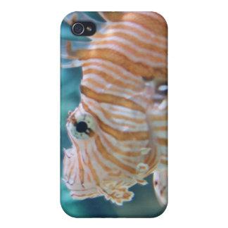Stripey Fish iPhone 4 Case