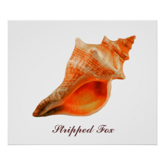 Stripped Fox Poster