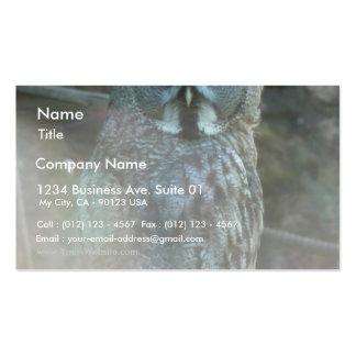 Strix Nebulosa Lapponi Business Card Template