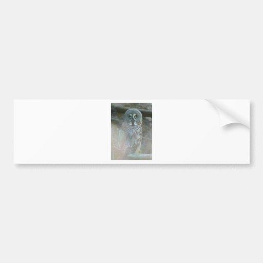 strix-nebulosa-lapponi car bumper sticker