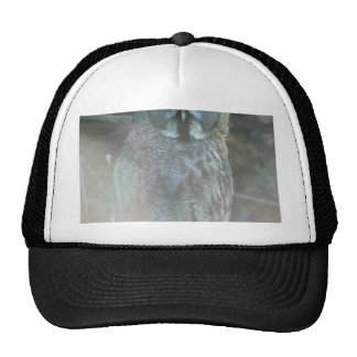 Strix Nebulosa Lapponi Hats