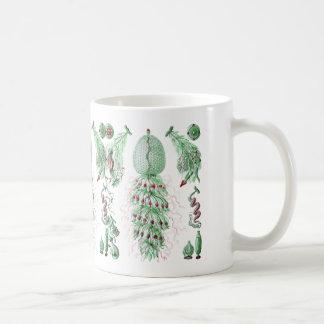 Strobalia Mugs