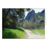 Stroll in the Sun Greeting Cards