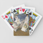 Strolling along the Seashore, 1909 Bicycle Playing Cards
