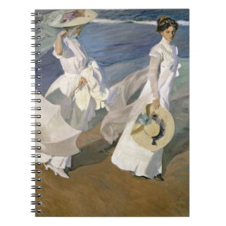 Strolling along the Seashore, 1909 Notebook
