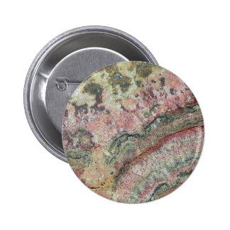 Stromatolites fosilizado pin redondo 5 cm