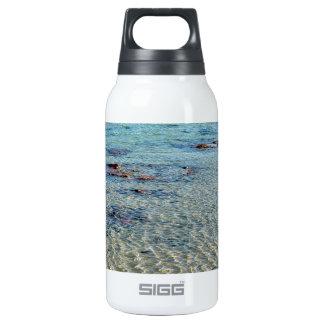 Stromatolites Insulated Water Bottle