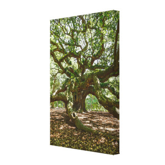 Strong And Bold Canvas Print