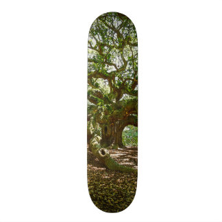Strong And Bold Skateboard Deck