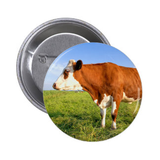 Strong Friesian cow 2 Inch Round Button