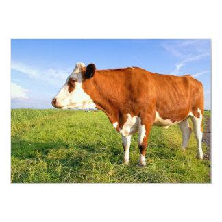 Strong Friesian cow Card