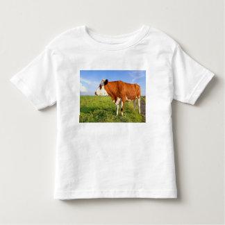 Strong Friesian cow Shirt