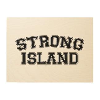 Strong Island, NYC, USA Wood Wall Art