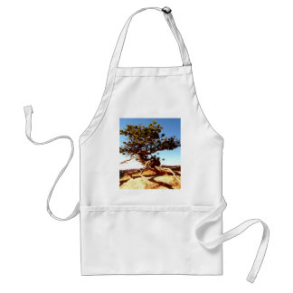 Strong live survive every where tree in dessert adult apron