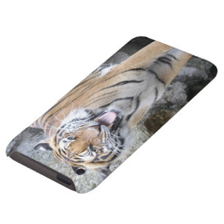 Strong Tiger iPod Touch Case
