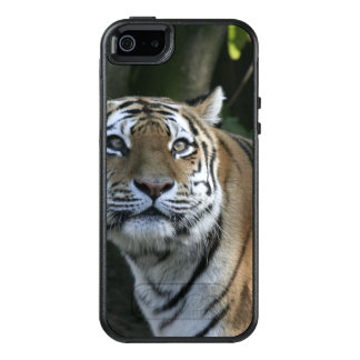 strong tiger OtterBox iPhone 5/5s/SE case