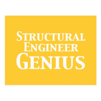 Structural Engineer Genius Gifts Postcard