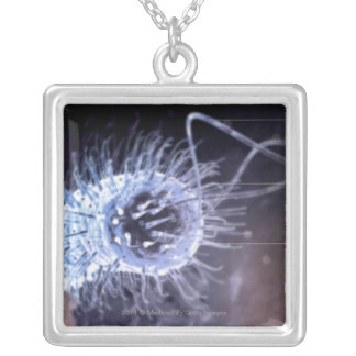 Structure of a helicobacter pylori cell silver plated necklace