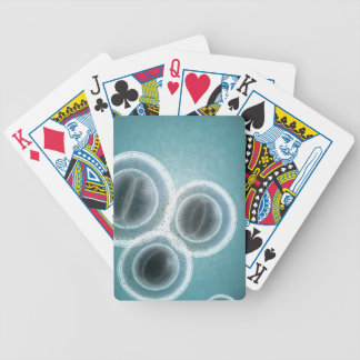 Structure of MRSA Bicycle Playing Cards