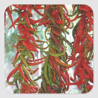 Strung and Hanging Red and Green Chili Peppers Square Sticker