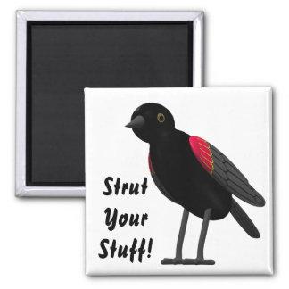 Strut Your Stuff! Magnets