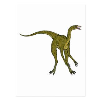 Struthiomimus Postcard