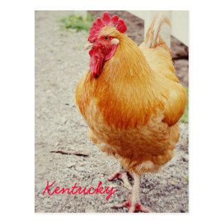 Struttin Rooster by JerseyFawn Postcards