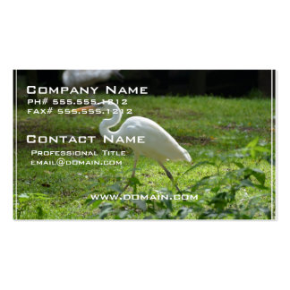 Strutting Egret Double-Sided Standard Business Cards (Pack Of 100)