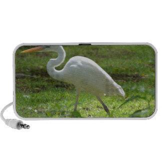 Strutting Egret iPod Speakers