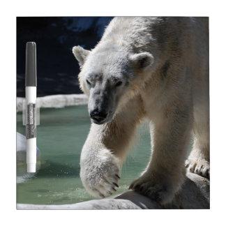 Strutting Polar Bear Dry-Erase Board