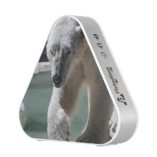 Strutting Polar Bear Speaker