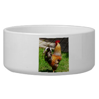 Strutting Rooster Bowl
