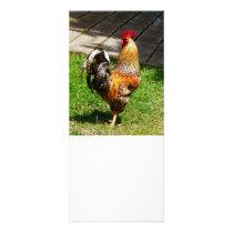 Strutting Rooster Rack Card